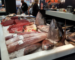 В феврале 2016 г. в городе Бремен, Германия, состоялась международная выставка «Fish International»
